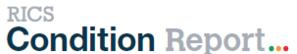 RICS Condition Report Image