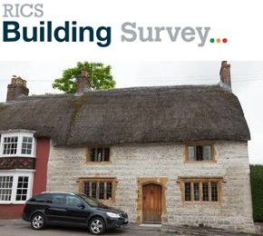 RICS Building Survey