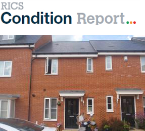 RICS Condition Report