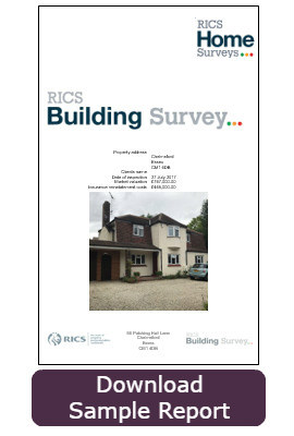 Building Survey Cover Case Study