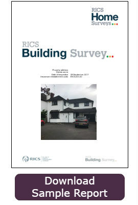 RICS Building Survey report cover